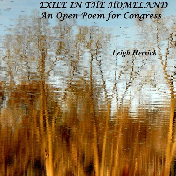 Leigh Herrick - Exile in the Homeland: An Open Poem for Congress