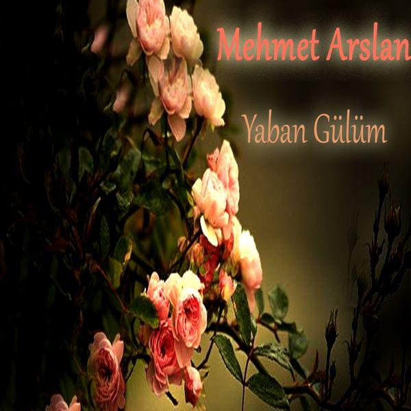 Mehmet Arslan - Yaban Gülüm