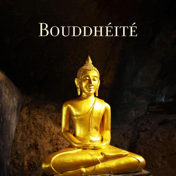 Buddhist méditation académie - Bouddhéité - Esprit calme, méditation silencieuse, contemplation religieuse