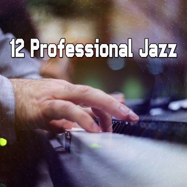 Lounge Chillout - 12 Professional Jazz