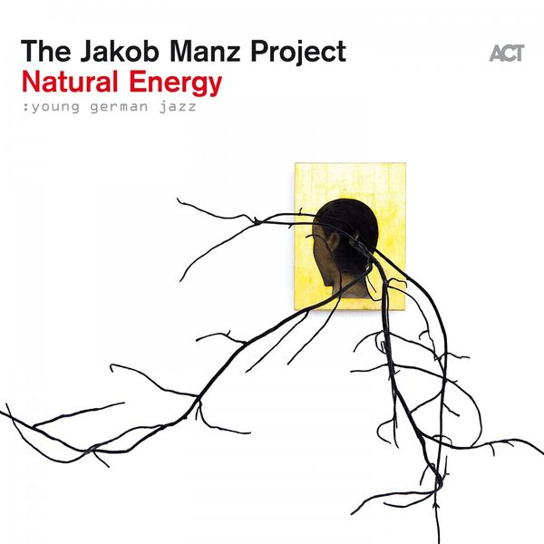 The Jakob Manz Project - Natural Energy