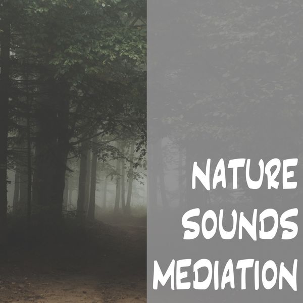 Nature Sounds - Nature Sounds Meditation