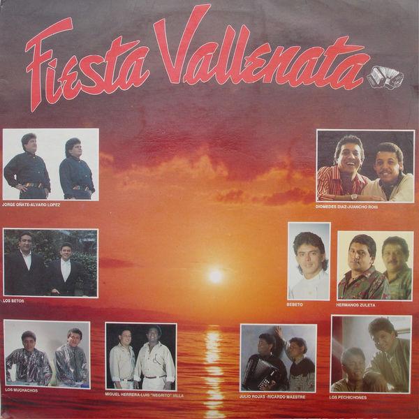 Fiesta Vallenata - Fiesta Vallenata vol. 17 1991