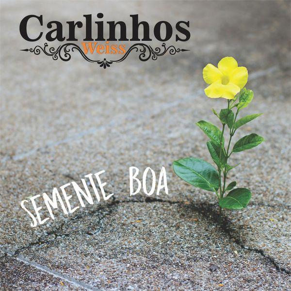 Carlinhos Weiss - Semente Boa
