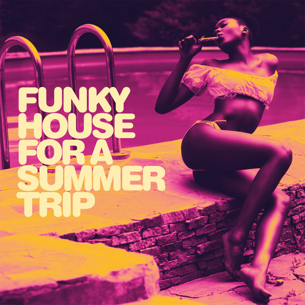 Various Artists - Funky House For a Summer Trip