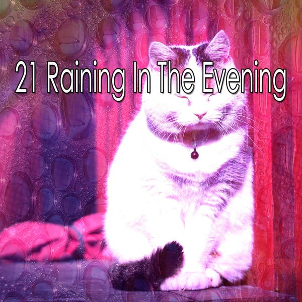 21 Raining in the Evening | Rain Sounds to stream in hi-fi, or to