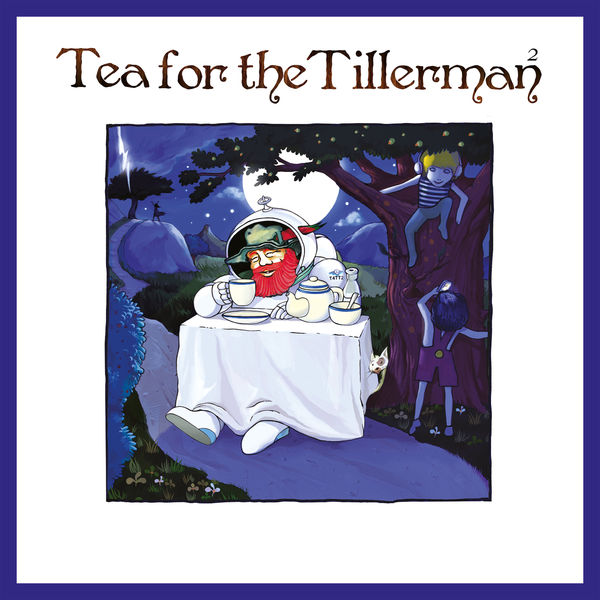 Cat Stevens - Tea For The Tillerman²