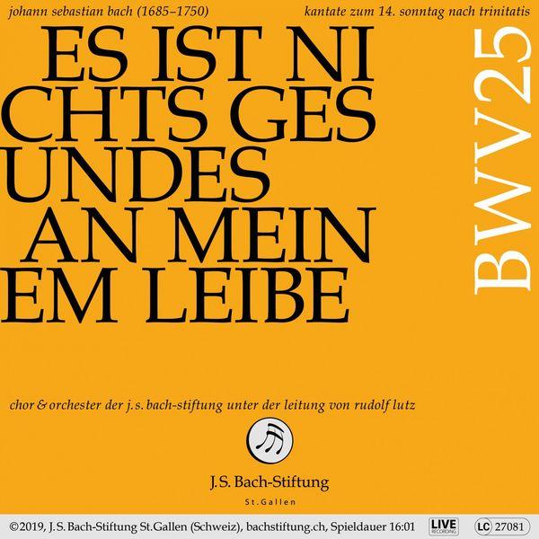 Chor der J.S. Bach-Stiftung - Bachkantate, BWV 25 - Es ist nichts Gesundes an meinem Leibe
