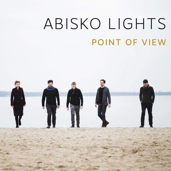 Abisko Lights - Point of View