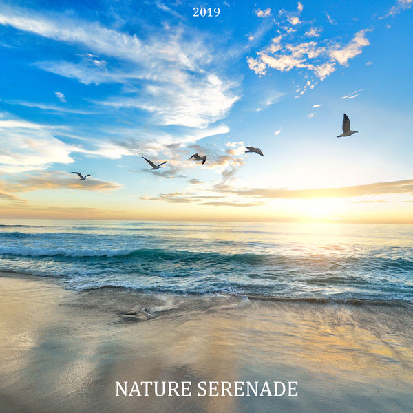 Relaxing Nature Sounds Collection - 2019 Nature Serenade: Soothing Sounds for Sleep, Meditation, Study, Relax