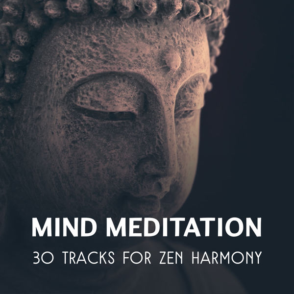 Odyssey for Relax Music Universe - Mind Meditation – 30 Tracks for Zen Harmony, Inner Balance, Soothing Relaxation Music Collective, Focus & Concentrate