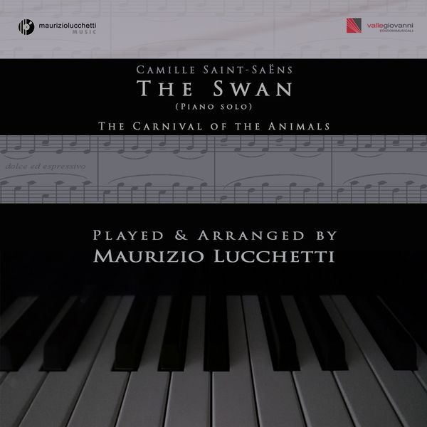 The Carnival of the Animals: No  13, The Swan (Arr  for