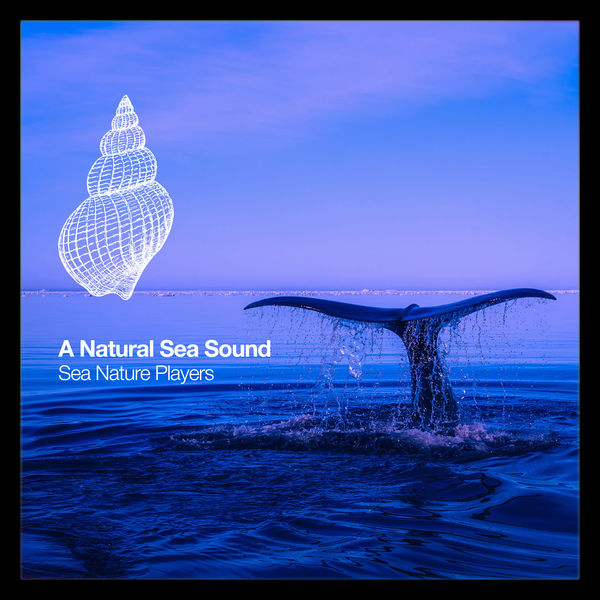 Sea Nature Players - A Natural Sea Sound