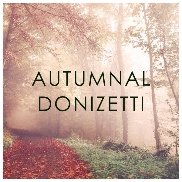Gaetano Donizetti - Autumnal Donizetti
