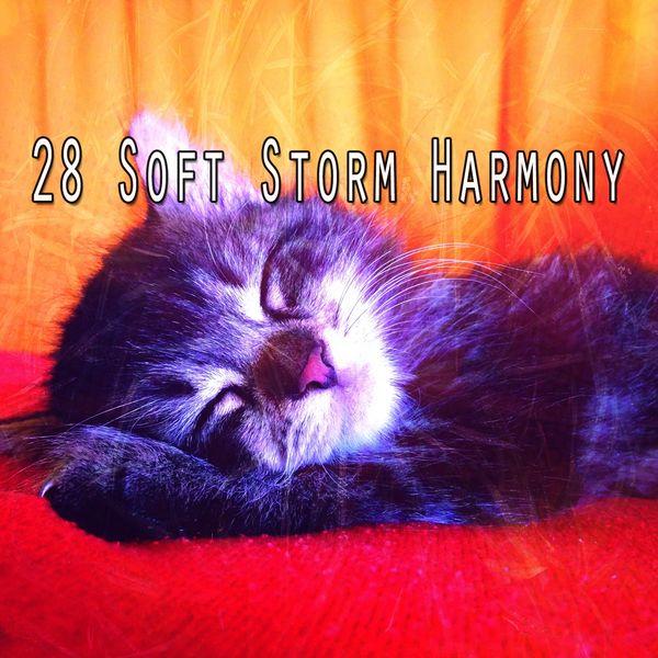 Rain Sounds - 28 Soft Storm Harmony