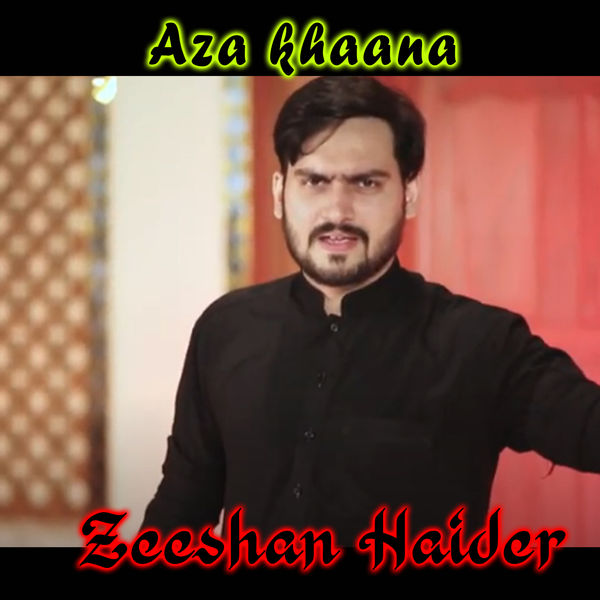 Zeeshan Haider - Aza Khaana - Single