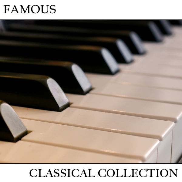 Album #19 Famous Classical Collection, Piano Pianissimo