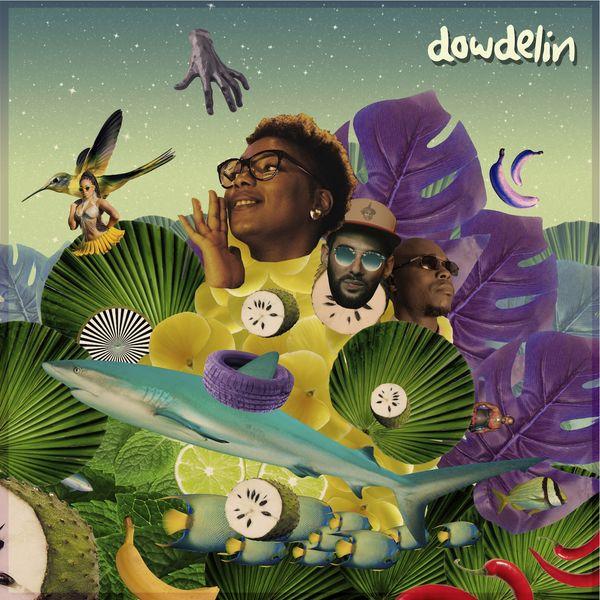 Dowdelin - Boaty Cruisy