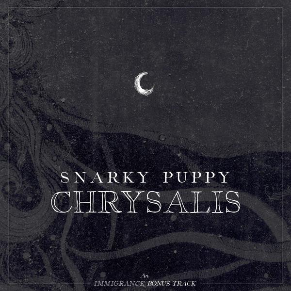 Snarky Puppy - Chrysalis