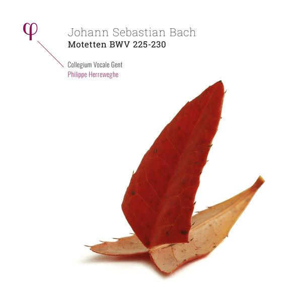 Collegium Vocale Gent - Bach: Motetten, BWV 225-230