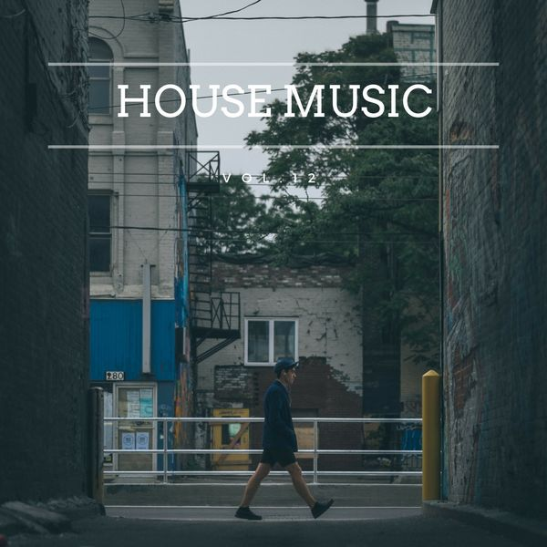 Various Interprets - House Music, Vol. 12