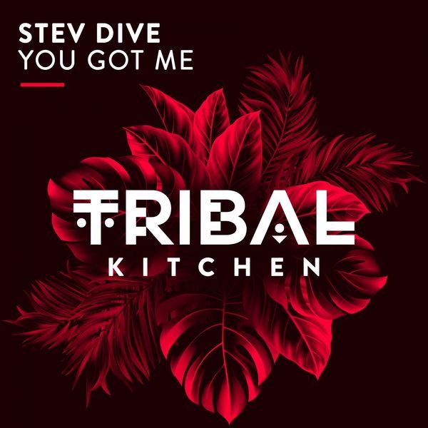 Stev Dive You Got Me