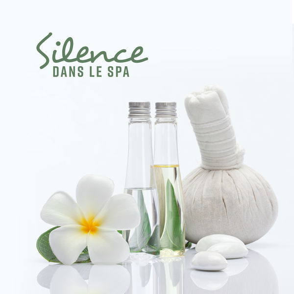Ensemble de Musique Zen Relaxante - Silence dans le spa – Instrumental pour spa & massage, Sons de la nature, Plein repos, Première fois, Bonne humeur, Bien-être