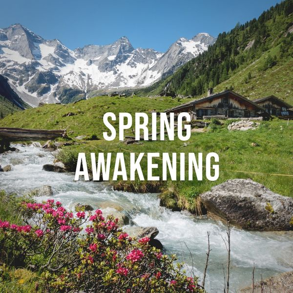 Alpine Sounds - Spring Awakening: Relaxing Natural Sounds of a Spring Meadow in the Alps, White Noise to Calm Your Stressed Mind