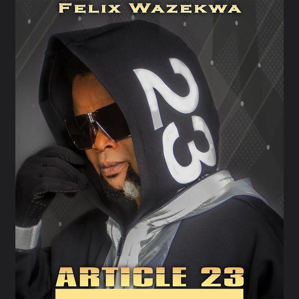Felix Wazekwa - Article 23