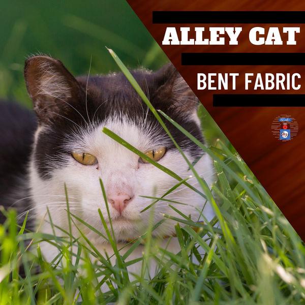 Bent Fabric - Alley Cat