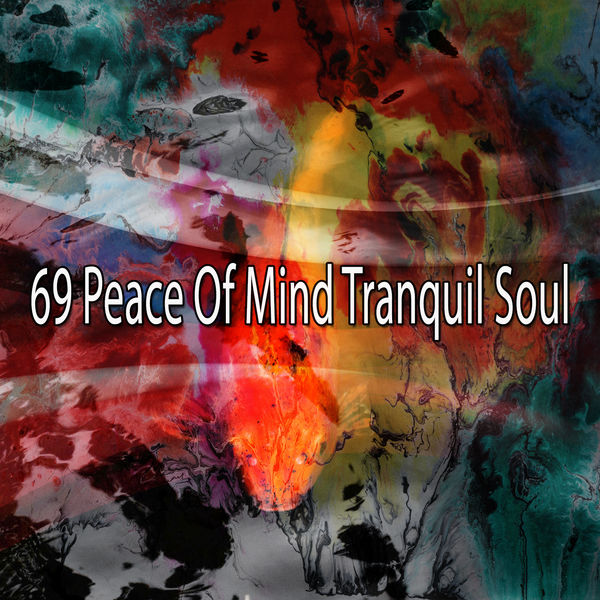 Yoga Workout Music - 69 Peace of Mind Tranquil Soul