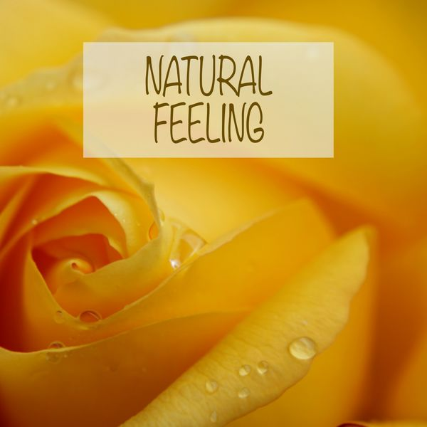 Nature Sounds - Natural Feeling