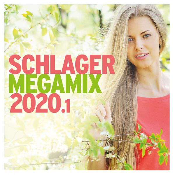 Various Artists - Schlager Megamix 2020.1