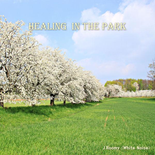 J.Roomy (White Noise) - Healing in the Park