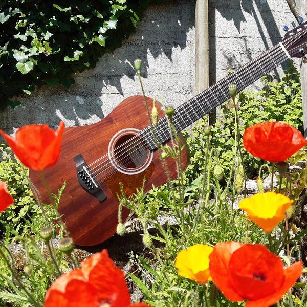 David Marnay - 12 Strings Experiences