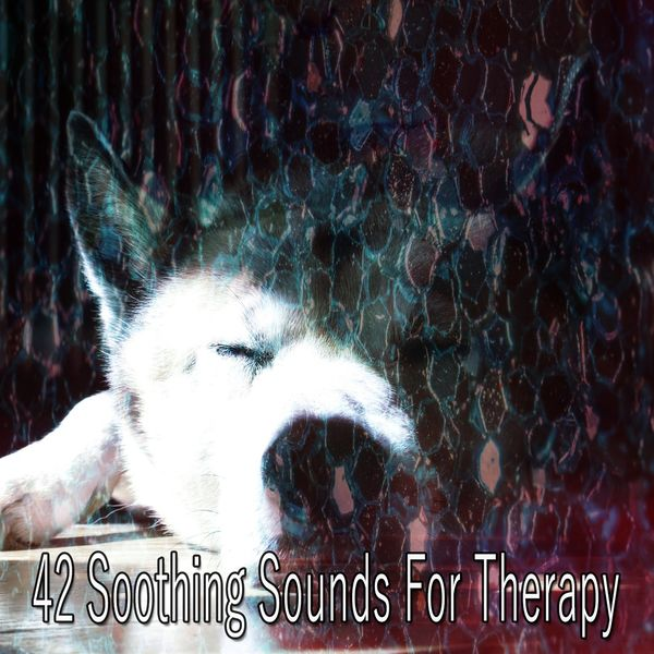 Deep Sleep Relaxation - 42 Soothing Sounds for Therapy