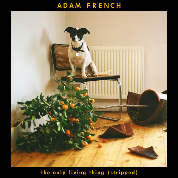 Adam French - The Only Living Thing