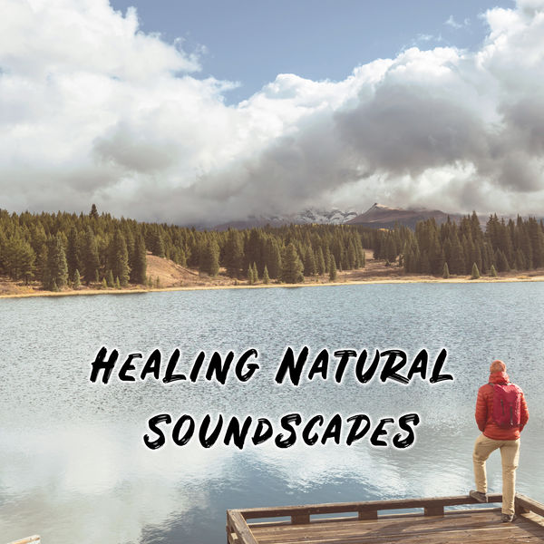 Oasis de Détente et Relaxation - Healing Natural Soundscapes - Feel Better Listening to This Soothing New Age Music Straight from Mother Nature, Perfect Relaxation, Reduce Stress, Contemplations