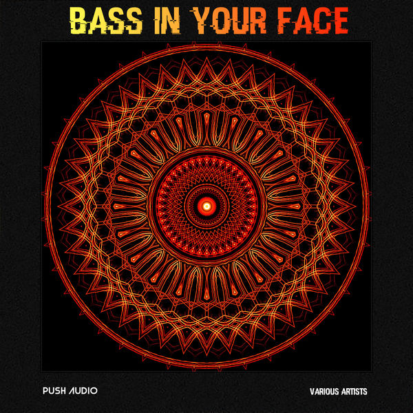 Various Artists - Bass In Your Face