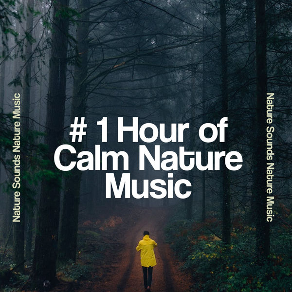 Nature Sounds Nature Music - # 1 Hour of Calm Nature Music