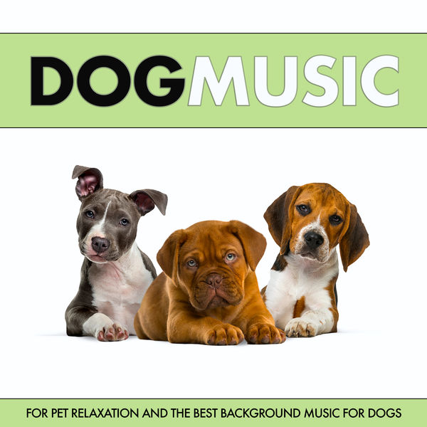 Dog Music - Dog Music For Pet Relaxation and The Best Music For Dogs