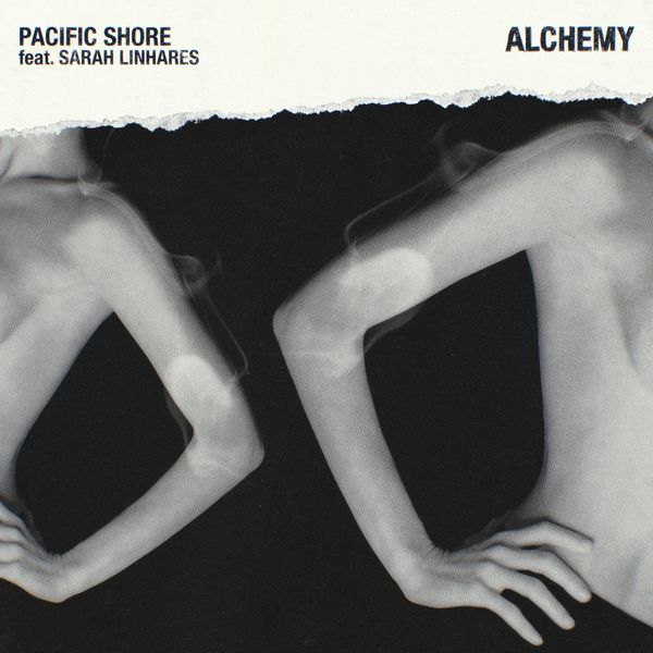 Pacific Shore - Alchemy
