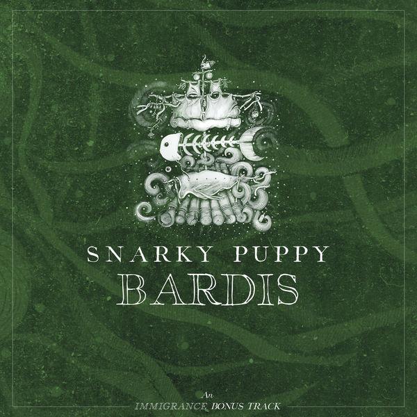 Snarky Puppy - Bardis