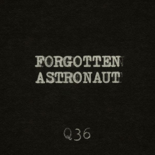 The Rentals - Forgotten Astronaut