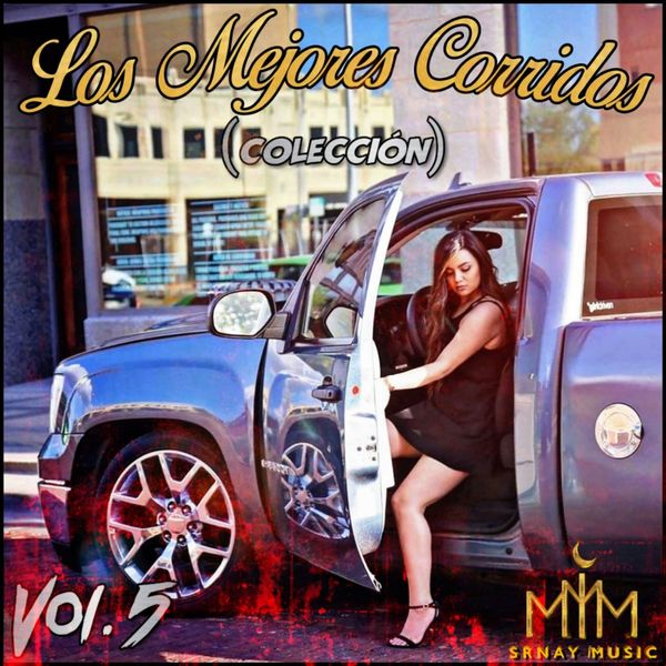 Various Artists - Así Toco Mi Vida, Vol. 5
