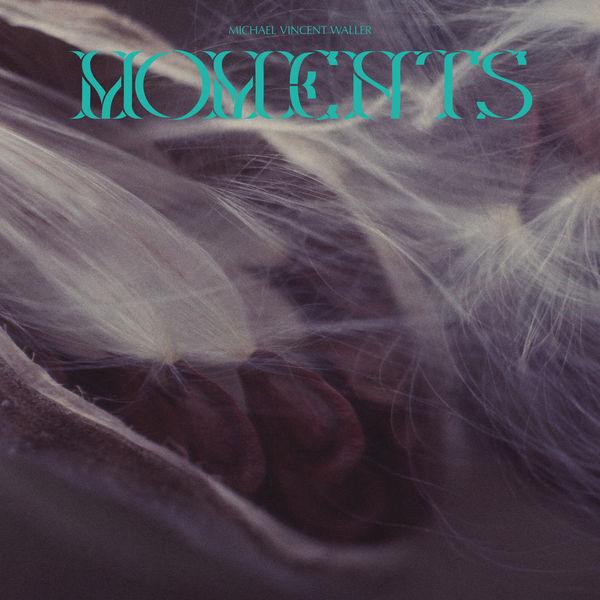 Michael Vincent Waller - Moments
