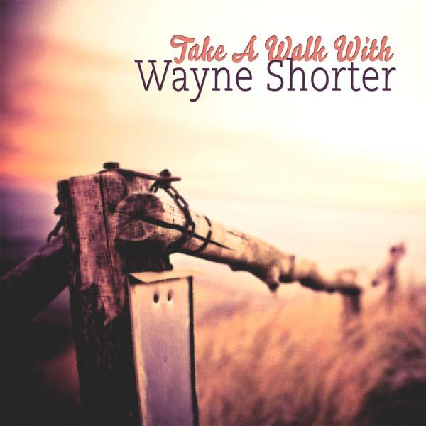 Wayne Shorter - Take A Walk With