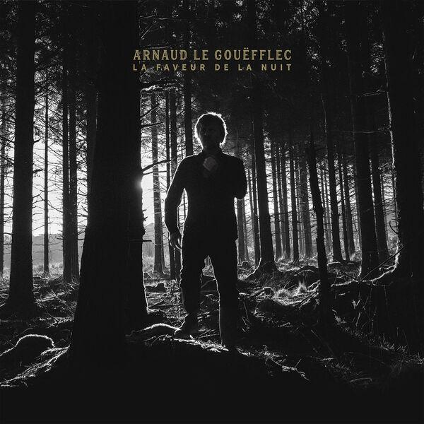 Arnaud Le Gouefflec - La Faveur de la Nuit