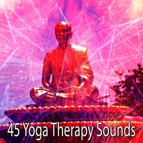 Album 45 Yoga Therapy Sounds, Asian Zen Spa Music Meditation