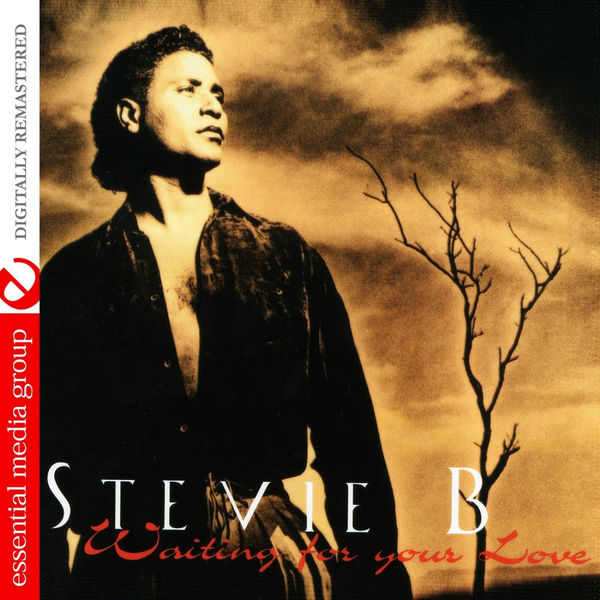 Stevie B - Waiting For Your Love